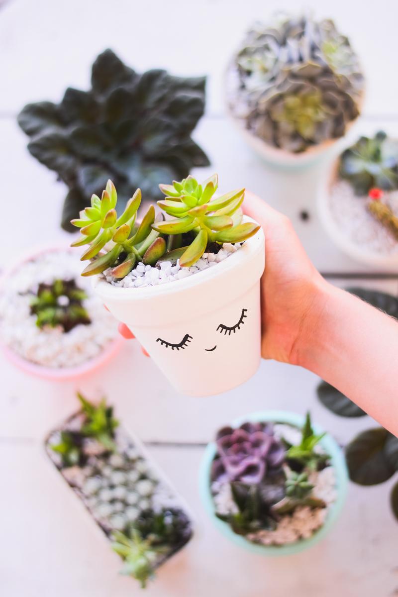 easy diy succulent plant pot craft
