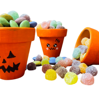 DIY Halloween Flower Pots with a Pumpkin Face Design