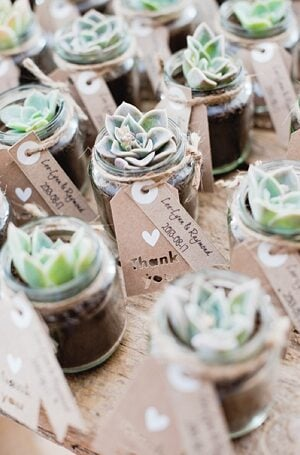 A succulent in a mason jar is a unique diy wedding mason jar idea your guests can keep for years to come